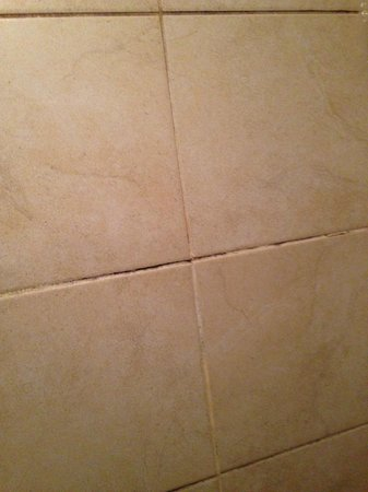 Willowbrook, IL: room 121 shower mold