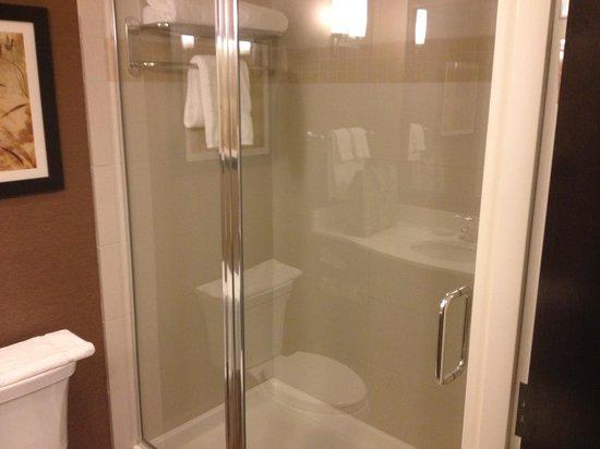 Hilton Garden Inn Ogden UT: Shower
