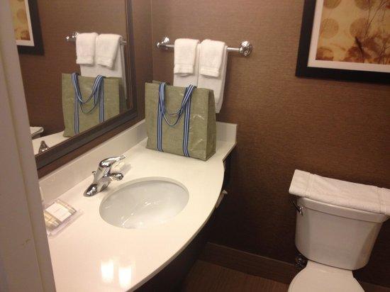 Hilton Garden Inn Ogden UT : Sink