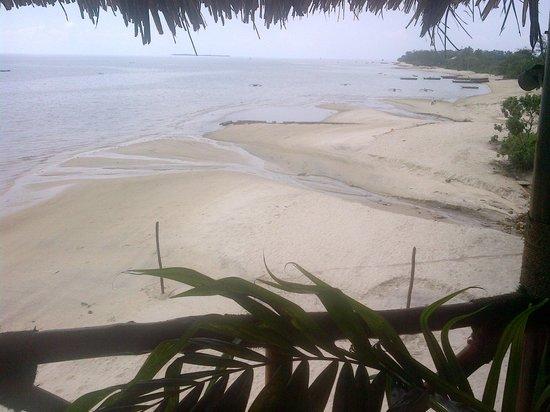 Zanzibar Ocean View : Beach View from Restaurant
