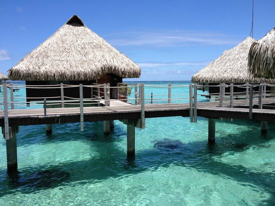 Hilton Moorea Lagoon Resort & Spa: Room on the water
