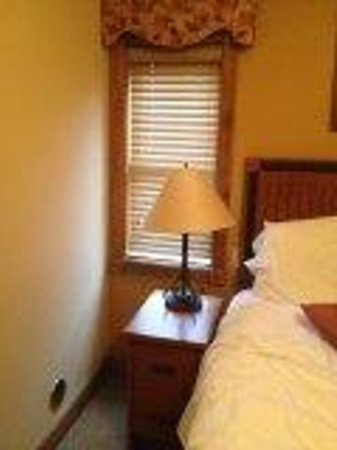 Westgate Smoky Mountain Resort & Spa : Only window in room