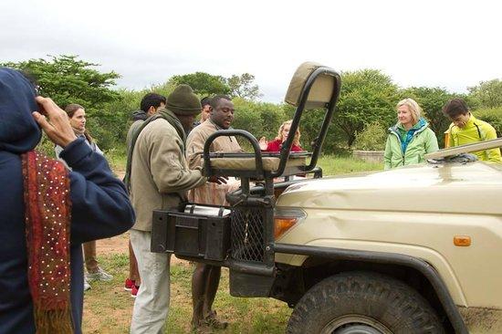 The Vuyani Safari Lodge : Tea and coffee break during our morning game drive