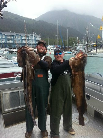 Great Alaska Adventure Lodge: Two big Ling Cod on board Fair Chase