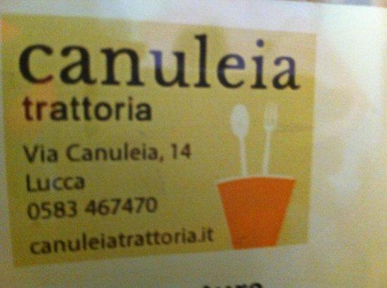 Canuleia : L'adresse (à deux pas de la place de l'amphithéâtre)