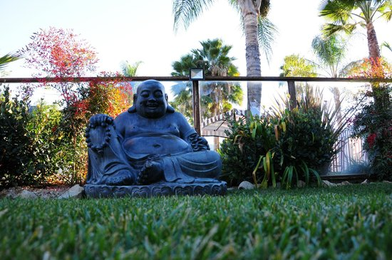 The Capri: Cool Buddha - this was right outside my patio door.  This area was so beautiful.