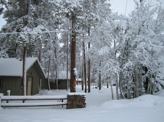 Daven Haven Lodge & Cabins: Our Cabins