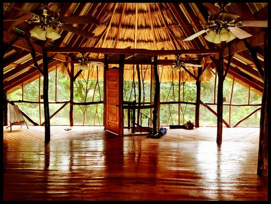 Cotton Tree Lodge: Gorgeous yoga studio