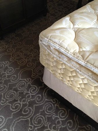 Hyatt Regency Coral Gables: Horrible mattress