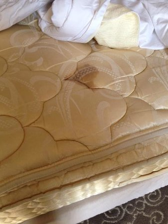 Hyatt Regency Coral Gables: Gross!