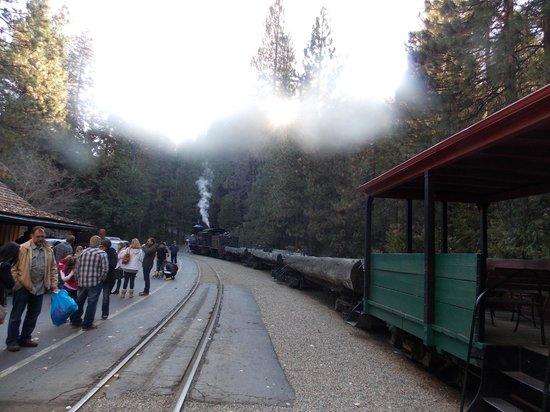 Yosemite Mountain Sugar Pine Railroad : Vista do trem
