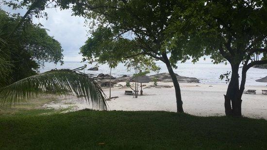 Makuzi Beach Lodge : view