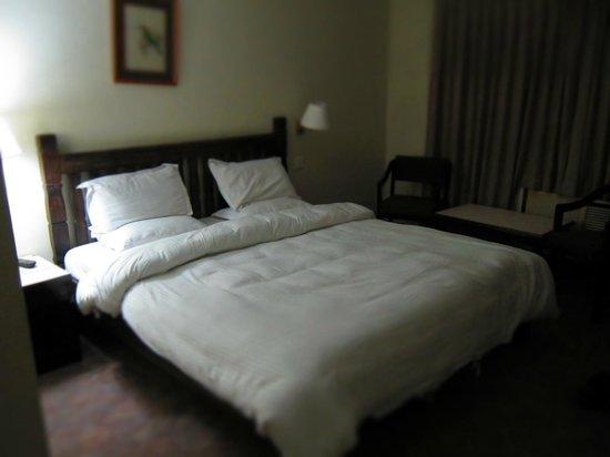 Hotel Holy Himalaya: Holy Himalaya Room