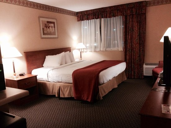 Country Inn & Suites By Carlson Fergus Falls : Large room