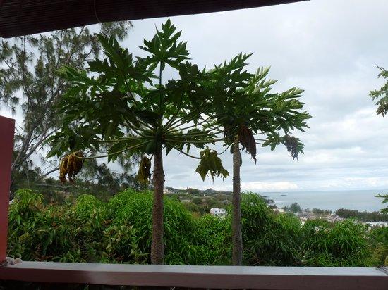 Gite Bellevue: Vue sur le lagon du balcon du studio