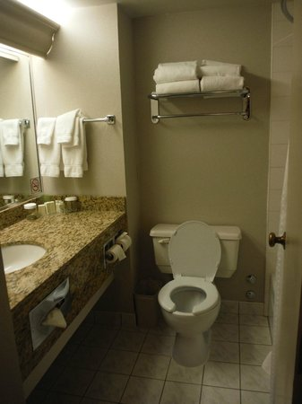 Holiday Inn Hotel & Suites Downtown: Clean bathrooms, heated floors