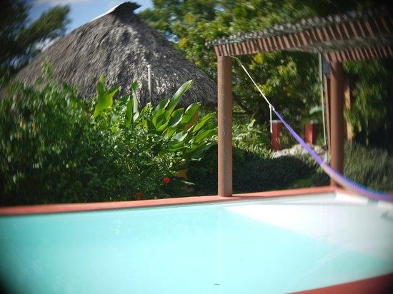 The Pickled Onion B&B / Restaurant: La piscine