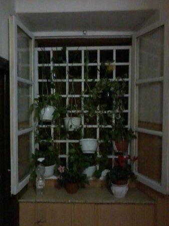 Fenicia : A decoração comum é como de fosse de uma casa ou Hostel.