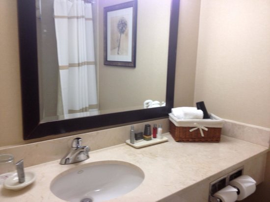 Ottawa Marriott Hotel: Bathroom could use a facelift but it was clean