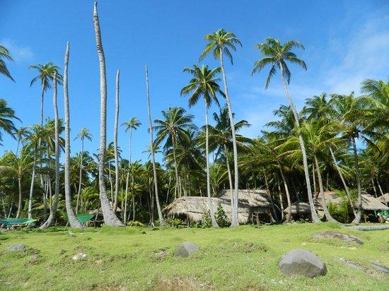 Derek's Place: view of dereks from the beach