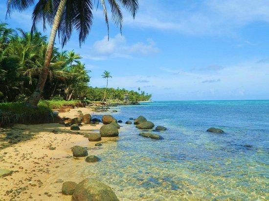 Derek's Place: another beach shot