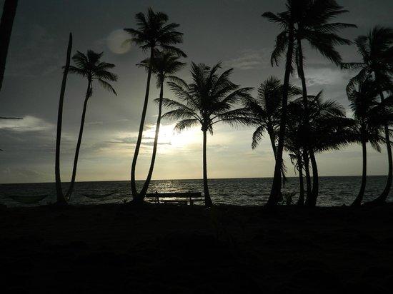 Derek's Place : sunset on the beach