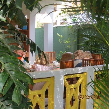 Birdhouse: Breakfast is served