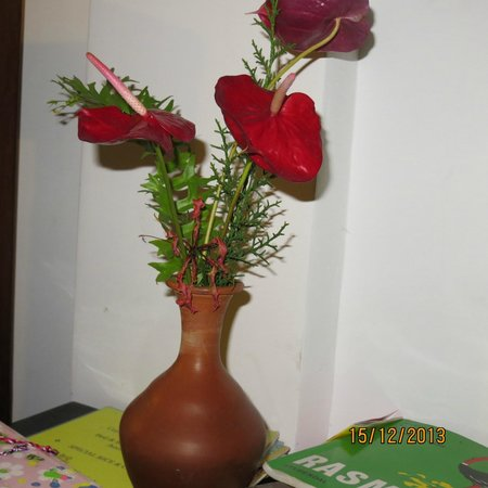 Birdhouse : Always nice flowers on the tables