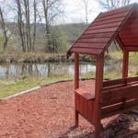 Morag's Lodge : Garden Pond