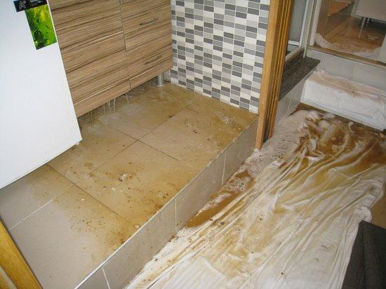 Lyon Apart Hotel: Inondations la suite