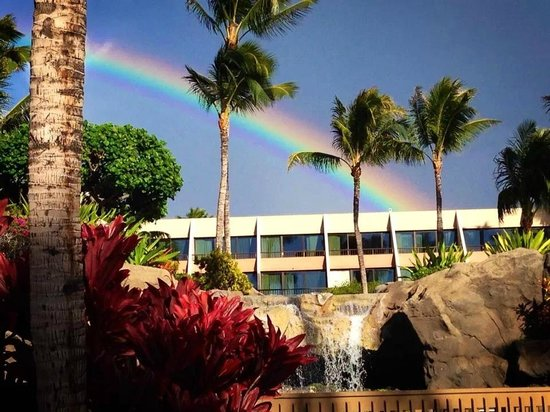 Marriott's Maui Ocean Club  - Lahaina & Napili Towers : Grounds at Ocean Club