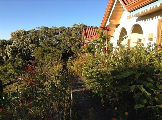 Hotel Claro de Luna: gardens