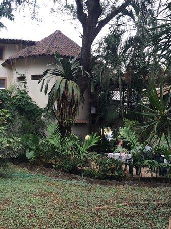 Hotel Mamiri: Jardines interiores