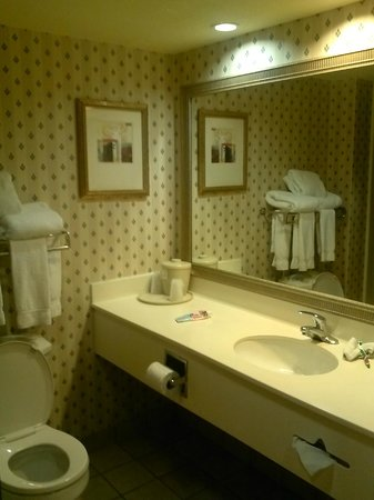 Holiday Inn Express Tampa - Rocky Point Island: Bathroom Sink Area