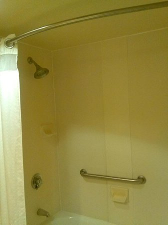 Holiday Inn Express Tampa - Rocky Point Island: Shower