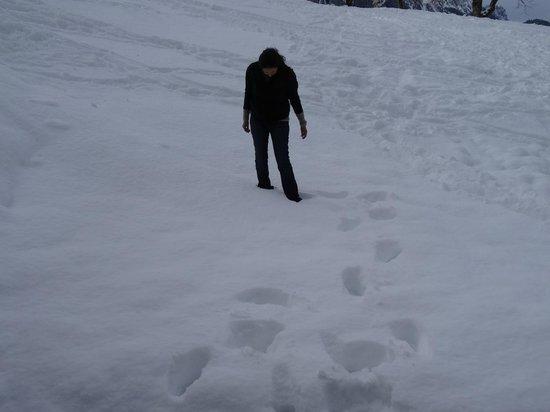 Hotel Spitzhorn: The snow around