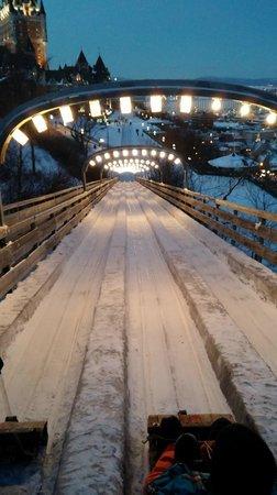 Terrasse Dufferin Slides : on your marks, get set...