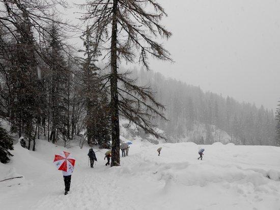 Rifugio Alpino Luigi Zacchi: rientro