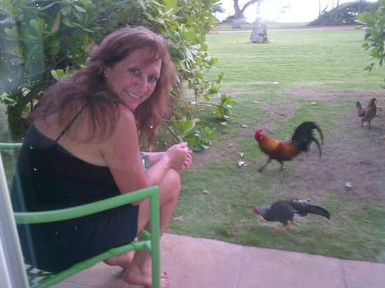 Hotel Coral Reef: View towards the beach and my wife feeding the chickens and roosters!
