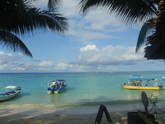 Bananarama Beach and Dive Resort : Bananarama beach