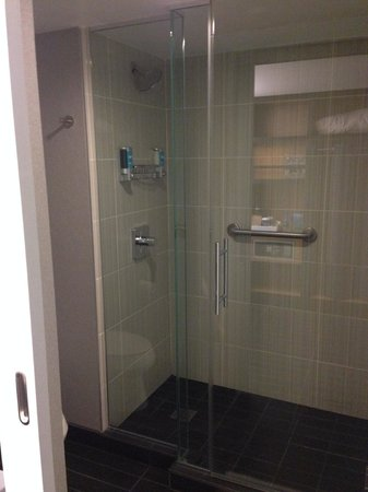 Aloft San Francisco Airport: Walk-in shower