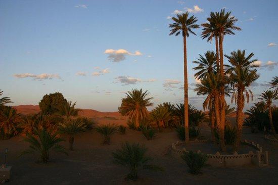 Auberge Camping Sahara: Deserto