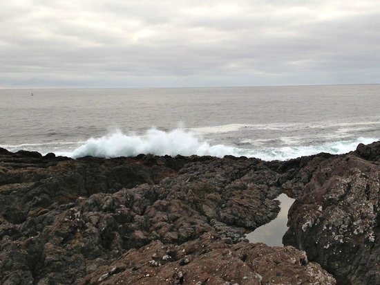 Wild Pacific Trail: Shot of the waves hitting the rocks, near the look out