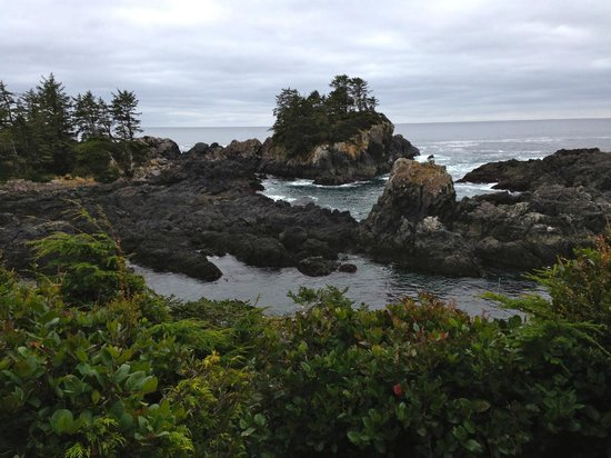 Wild Pacific Trail: small tidal pools along the rocks