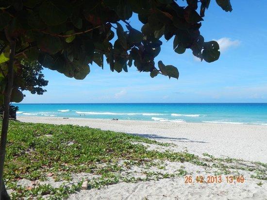 Blau Varadero Hotel Cuba: Beach in dowtown Varadero