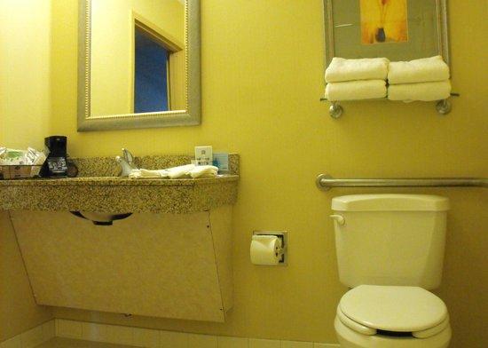Hampton Inn White River Junction: Room 119 - accessible bathroom