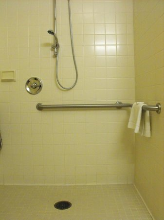 Hampton Inn White River Junction : Room 119 - accessible bathroom