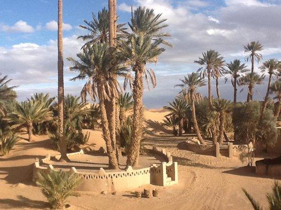 Auberge Camping Sahara: Vue depuis la terrasse