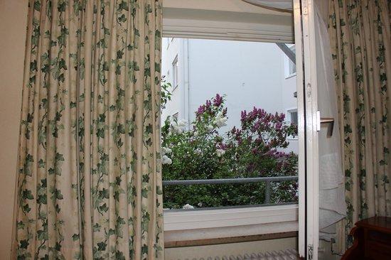 Kraft Hotel: вид из окна