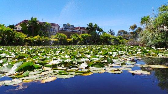 Barooga, Australia: Lily's